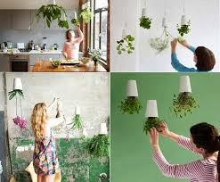 creative home decorating with flowers and plants sky planter