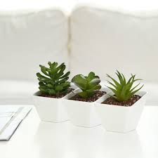 succulent planter white ceramic angle design mini succulent planter pots set of 3