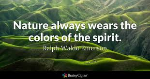 colors quotes brainyquote