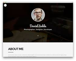 Resume Wizard Online by Free Professional Resume Website Templates