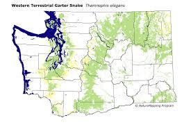 Map Washington Distribution Map Western Terrestrial Garter Snake Thamnophis