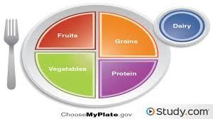 healthy diet planning guidelines nutrients u0026 food groups video