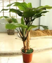 Artificial Plant Decoration Home Indoor Banana Tree Home Decoration Fake Tree Sale Decorative