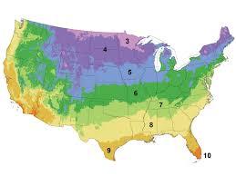 Texas Vegetable Garden Calendar by Growing Calendar