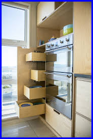 best plywood for cabinets marvelous best plywood kitchen units woodworking and for cabinets