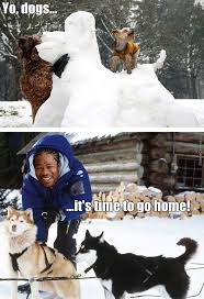Memes About Snow - snow memes best collection of funny snow pictures