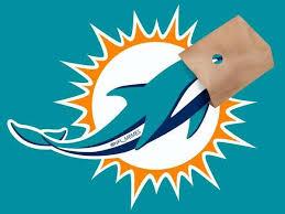 Miami Dolphins Memes - miami dolphins meme home facebook