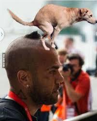 Chions League Meme - dani alves new haircut the best haircut of 2018