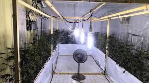 Grow Room Lights Yet Another Vertical Grow Update Youtube