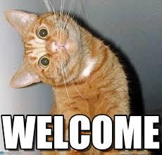 Welcome Meme - welcome cat tilting head meme on memegen