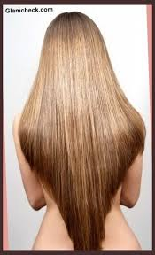 back of hairstyle cut with layers and ushape cut in back u shaped haircut with layers for long hair image gallery in u