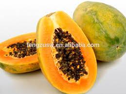 fermented papaya powder dry papaya powder papaya seed powder buy