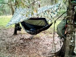 mosquito hammock customers
