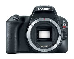 amazon com canon eos rebel sl2 digital slr camera body wifi