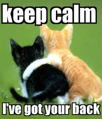 I Ve Got Your Back Meme - ive got your back meme