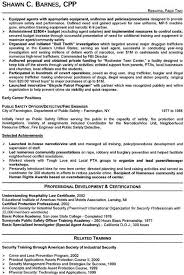 It Executive Resume Examples Security Industry Sample Resume