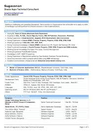 it consultant resume technical consultant resume sle it consultant resume sle