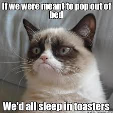 Grumpy Cat Sleep Meme - grumpy cat says if we were meant to pop out of bed we d all sleep
