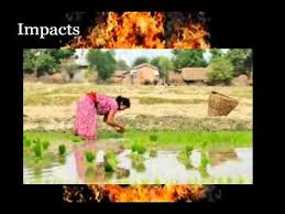 global warming causes and effects global warming causes effects and solutions youtube