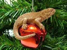 new bearded on bell lizard reptile tree