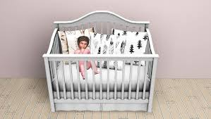 Europa Baby Palisades Lifetime Convertible Crib by Baby Crib Donation Creative Ideas Of Baby Cribs