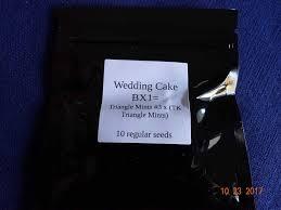Wedding Cake Genetics Wedding Cake Bx1 Adventure The Autoflower Network Afn