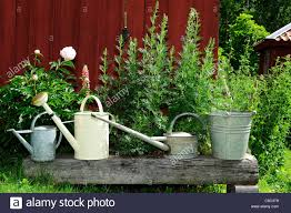 gardening equipment on a wooden bench against plants stock photo