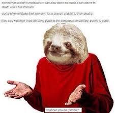 meme throwback guess i ll die memebase funny memes