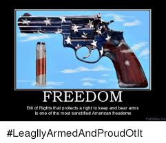 Right To Bear Arms Meme - freedom bill of rights that protects a right to keep and bear arms