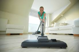 Vacuum For Wood Floor Choosing The Best Vacuum For Pet Hair Perfect Pet Vacuum