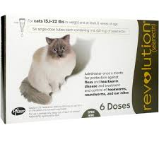 revolution for cats 15 1 22 lbs 6 mnth