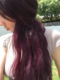 black hair to raspberry hair 25 ide terbaik raspberry hair color di pinterest rambut ungu