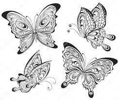 vector set of black and white calligraphic butterflies isolated on