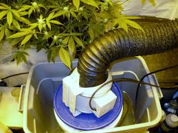 How To Build A Diy by How To Build A Diy Swamp Cooler For Your Grow Room Youtube