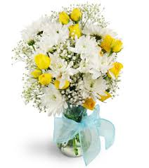 elkton florist baby it s you elkton md florist