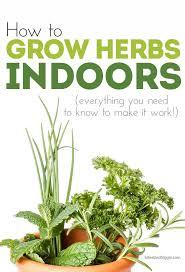 Growing Herbs Inside Garden Design Garden Design With Growing Herbs Gardening