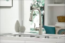 Faucet Home Depot Bathroom by Kitchen Home Depot Kohler Bathroom Faucet Kohler Pull Out