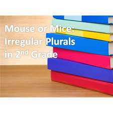 worksheet and activity ideas for teaching irregular plural nouns