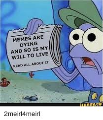Dying Memes - memes are dying and so is my will to live read all about it meme