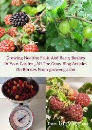 329 best community gardens images on pinterest garden ideas