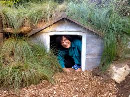 diy how make hobbit house your garden cultivate wine and weed volunteer plays garden hobbit house fernwood gardens