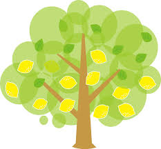 image of a tree free clip free clip on