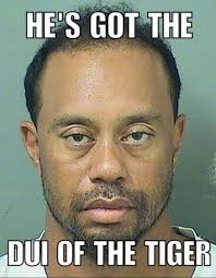 Dui Meme - 17 best memes of tiger woods arrested for dui sportige