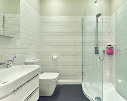 attractive ideas 12 bathroom shower design and pictures homepeek