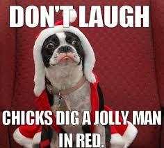 Christmas Dog Meme - the many memes of christmas my merry christmas