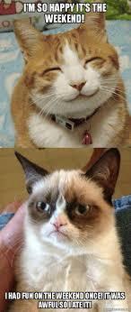 Grumpy Cat Meme I Had Fun Once - i m so happy it s the weekend i had fun on the weekend once it was