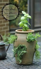 Indoor Kitchen Garden Ideas Potted Herb Garden Gardens And Landscapings Decoration