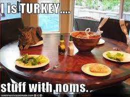 borrowed heaven happy thanksgiving stuff ings