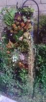 24 best living walls images on pinterest vertical gardens