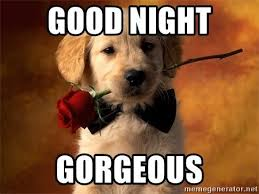 Romantic Memes For Her - cute good night text messages for him her good night quotes